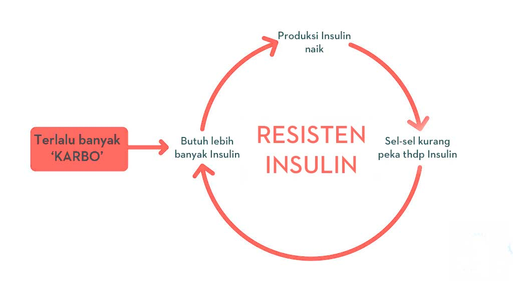 Resisten-Insulin-lingkaran-setan-gimana