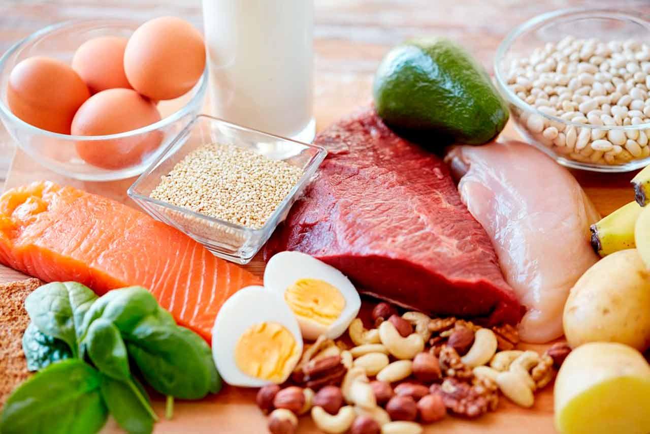 makanan-makronutrien-protein