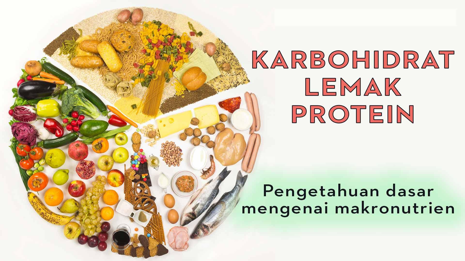KARBOHIDRAT-LEMAK-PROTEIN-MAKRONUTRIEN