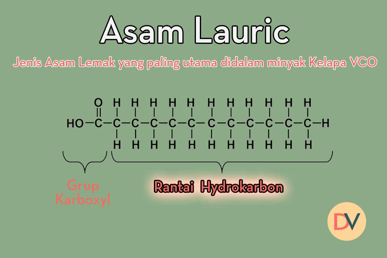 asam-lauric-MCT-VCO