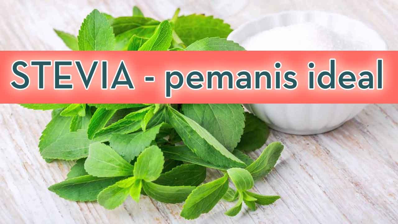 Stevia-aman-Diabetes