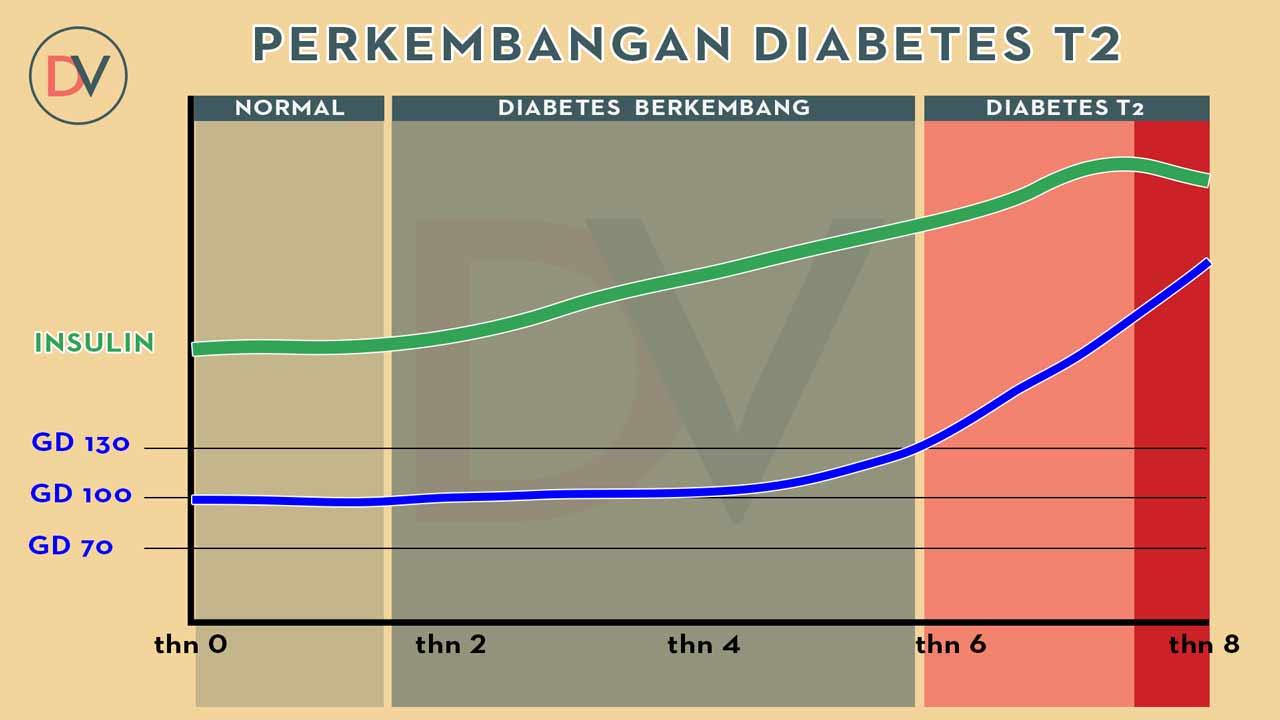 Insulin dan Diabetes T2